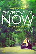 Příběh pojednává o vzniku lásky mezi chlapcem (Miles Teller), jehož život zahrnují krásné dívky a bouřlivé párty a roztomilou, nevinnou dívkou (Shailene Woodley)