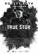 Film True Štúr se odehrává během jedné lednové noci v Modre v roce 1856. Hlavní postavou je tajemný Samuel Hronský, fiktivní figura, kterou vytvořili tvůrci. Hronský přichází do Modry, aby […]