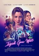 Ingrid Thorburn (Aubrey Plaza), duševne narušená mladá žena, je posadnutá Taylor Sloane (Elizabeth Olsen), hviezdou sociálnych médií, ktorá má, zdá sa, dokonalý život. Keď sa však Ingrid rozhodne všetko nechať […]