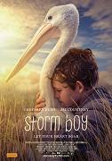 Chlapec a pelikán je dojemný příběh o neobvyklých přátelstvích a bezpodmínečné lásce. Mike Kingley vypráví vnučce příběh ze svého dětství, které po smrti své matky prožil s otcem na opuštěném […]