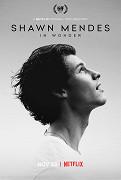 Shawn Mendes se v dokumentu, který se natáčel během jeho světového turné, otevřeně rozpovídá o slávě, vztazích i o tom, co ho v branži ještě čeká